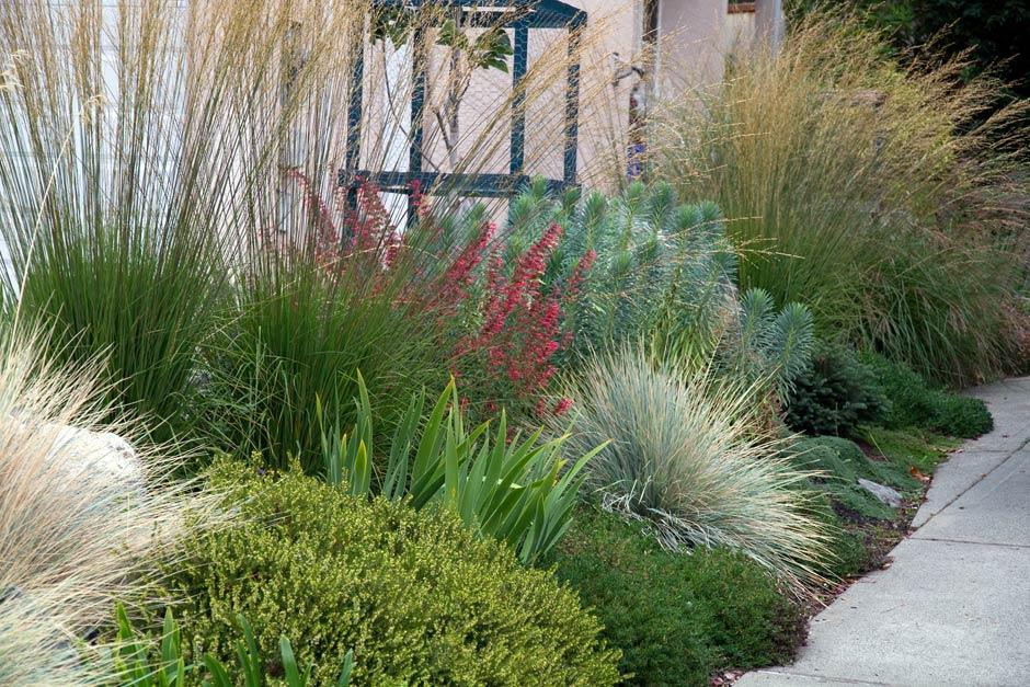Michelle Place Garden - Michelle Place Garden Rusnak Gallant Ltd.
